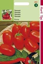 Hortitops Zaden - Tomaten Roma Vf