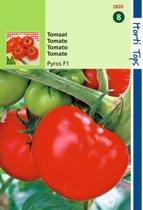 2 stuks Hortitops Tomaten Pyros F1