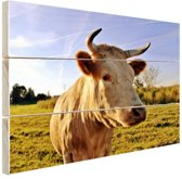 Koe in de natuur Hout 30x20 cm - klein - Foto print op Hout (Wanddecoratie)