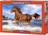 Horse on the Beach - 500 stukjes