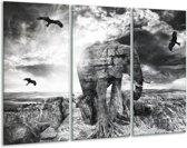 Glasschilderij Olifant   Grijs, Zwart, Wit   120x80cm 3Luik   Foto print op Glas    F003925