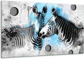 Glas schilderij Zebra, Dieren   Blauw, Zwart, Wit   120x70cm 1Luik   Foto print op Glas    F007022