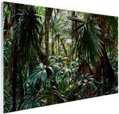 FotoCadeau.nl - Planten in regenwoud Glas 90x60 cm - Foto print op Glas (Plexiglas wanddecoratie)