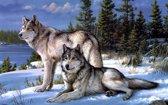 Diamond Painting Pakket Wolven stel - 40x30 - FULL - SEOS Shop ®