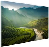 Groene vlakte in Azie Glas 90x60 cm - Foto print op Glas (Plexiglas wanddecoratie)