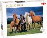 Camargue Horses 1000 stukjes