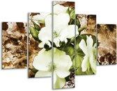 Glasschilderij Bloem | Bruin, Groen, Zwart | 100x70cm 5Luik | Foto print op Glas |  F003342