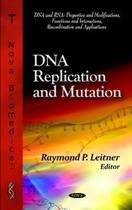 DNA Replication & Mutation
