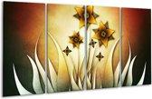 Glasschilderij Bloem   Geel, Bruin, Wit   160x80cm 4Luik   Foto print op Glas    F004129