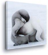 Penguins Canvas Print 80cm x 80cm