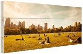 Central Park zonnig Hout 80x60 cm - Foto print op Hout (Wanddecoratie)
