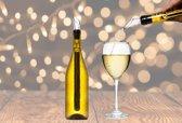 Wijnkoeler stick RVS, wijnkoeler staaf