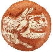 Moses Stuiterbal Met Dinofossiel 6,5 Cm Bruin