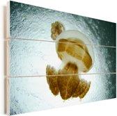 De Mastigias kwallen in het beroemde kwallenmeer Palau Vurenhout met planken 90x60 cm - Foto print op Hout (Wanddecoratie)
