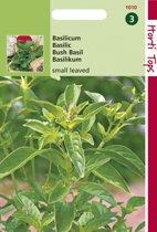 Hortitops Zaden - Basilicum Fijne