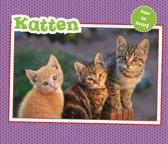 Vertel Maar - Katten