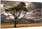 Canvas schilderij Natuur | Wit, Zwart, Grijs | 120x70cm 1Luik