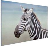 FotoCadeau.nl - Zebra portret  Aluminium 60x40 cm - Foto print op Aluminium (metaal wanddecoratie)