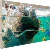 Nijlpaard Close-up met vissen Hout 80x60 cm - Foto print op Hout (Wanddecoratie)