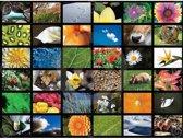 XL Legpuzzel 400 stuks Bloemen-en dierenplaatjes