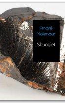 Shungiet