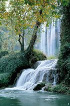 Waterval-rivier-poster-61x91.5cm