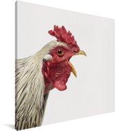 Haan - Portret dierenprint kinderkamer Canvas 50x50 cm - Foto print op Canvas schilderij (Wanddecoratie woonkamer / slaapkamer)