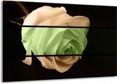 Canvas schilderij Roos | Groen, Bruin, Zwart | 140x90cm 1Luik