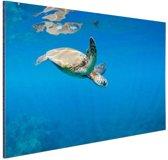 Schildpad zwemmend in oceaan Aluminium 90x60 cm - Foto print op Aluminium (metaal wanddecoratie)