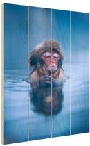 Sneeuwaap blauw water Hout 40x60 cm - Foto print op Hout (Wanddecoratie)