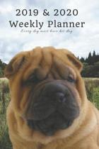 2019 & 2020 Weekly Planner Every Dog Must Have His Day.