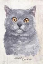 British Shorthair Cat Portrait Notebook: Blank Lined Journal for Cat Lovers, Cat Mom, Cat Dad and Pet Owners - 6x9 with College Ruled Pages