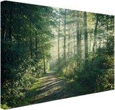 Een dichtbegroeid bos Canvas 30x20 cm - Foto print op Canvas schilderij (Wanddecoratie)