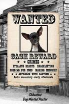 Chihuahua Dog Wanted Poster