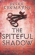 The Spiteful Shadow (A Sister Fidelma e-novella)