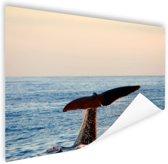 Walvisstaart uit het water Poster 180x120 cm - Foto print op Poster (wanddecoratie) / Dieren Poster XXL / Groot formaat!