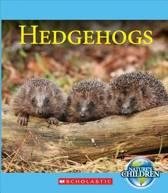 Hedgehogs (Nature's Children)