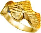 Noorderlicht. Gouden ring 22mm