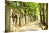 Pere Lachaise-begraafplaats in Parijs Aluminium 30x20 cm - klein - Foto print op Aluminium (metaal wanddecoratie)