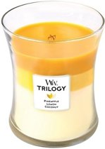 Woodwick trilogy medium candle Fruits of summer
