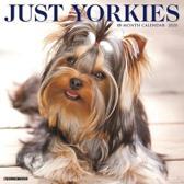 Just Yorkies 2020 Wall Calendar (Dog Breed Calendar)