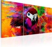 Schilderij - Jungle van Kleuren , 3 luik