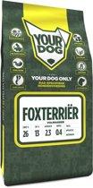 Yourdog foxterri