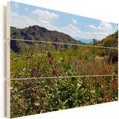 Wilde bloemen op het berglandschap van het Nationaal park Vesuvius in Italië Vurenhout met planken 80x60 cm - Foto print op Hout (Wanddecoratie)
