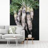 Fotobehang vinyl - Vers geoogste rammenassen met een donkere ondergrond breedte 270 cm x hoogte 360 cm - Foto print op behang (in 7 formaten beschikbaar)