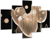 Glasschilderij Tulp | Grijs, Zwart | 100x70cm 5Luik | Foto print op Glas |  F005009