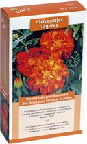 Buzzy® Groenbemester Tagetes - 50 gram
