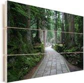 Begraafplaats bij de Aziatische berg Koyasan in Japan Vurenhout met planken 90x60 cm - Foto print op Hout (Wanddecoratie)