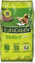 Evergreen Biofert Plus 25kg Gazonmeststof indirecte tegen mos 250m²
