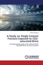 A Study on Single Cement Fracture Exposed to Co2-Saturated Brine